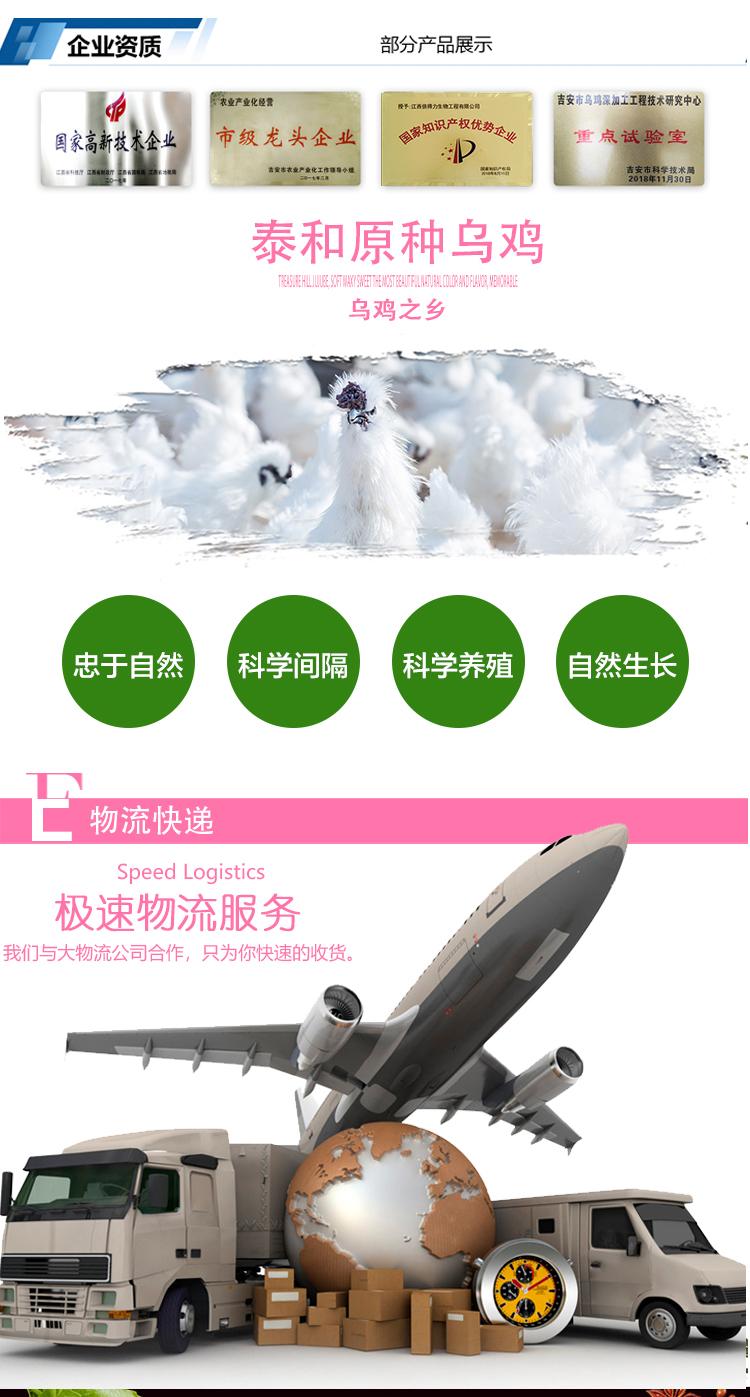 新—乌鸡益生菌设计_07.jpg
